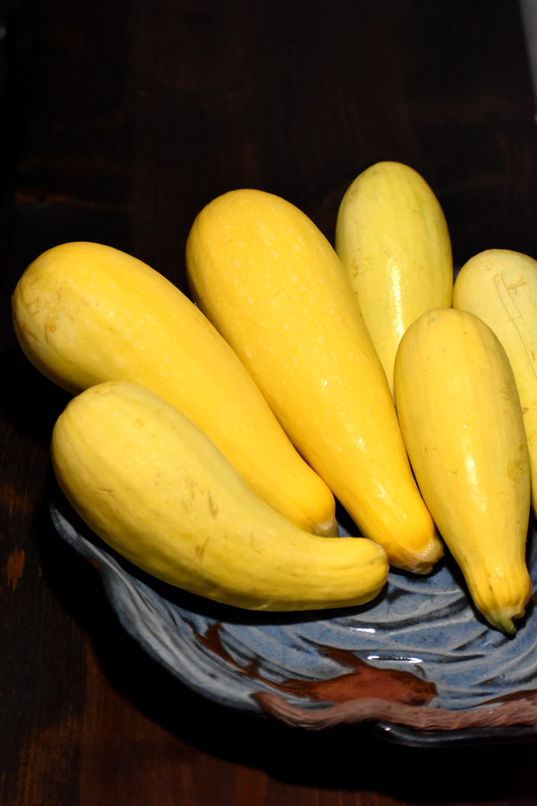six yellow squash in a light blue bowl