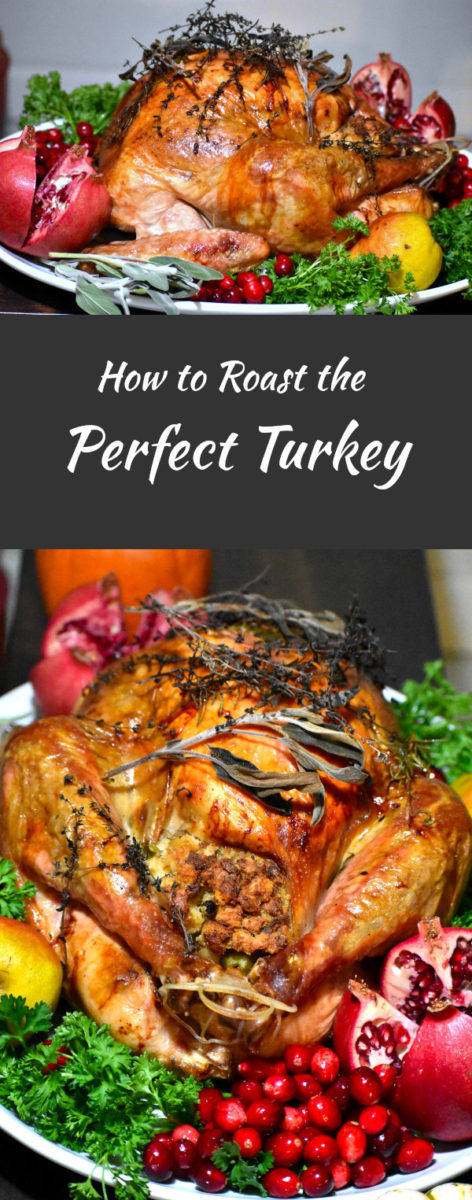 long pin of roast turkey