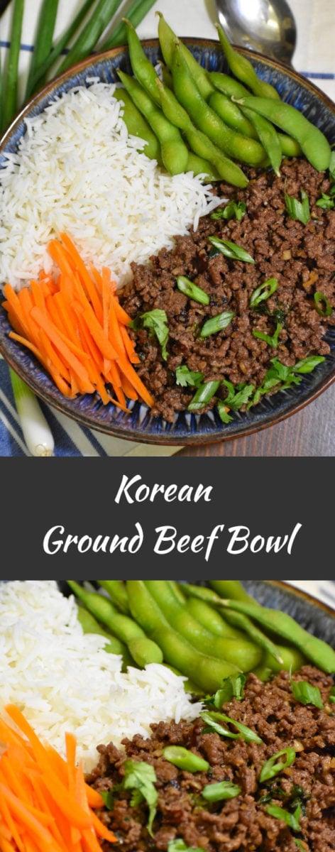 long pin of korean ground beef bowl