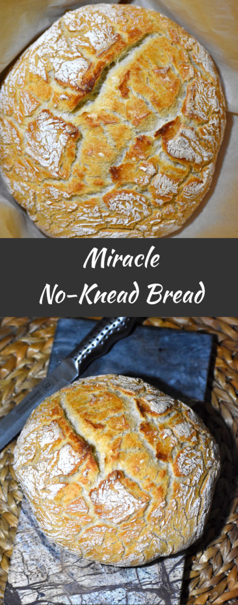 long pin of miracle no-knead bread