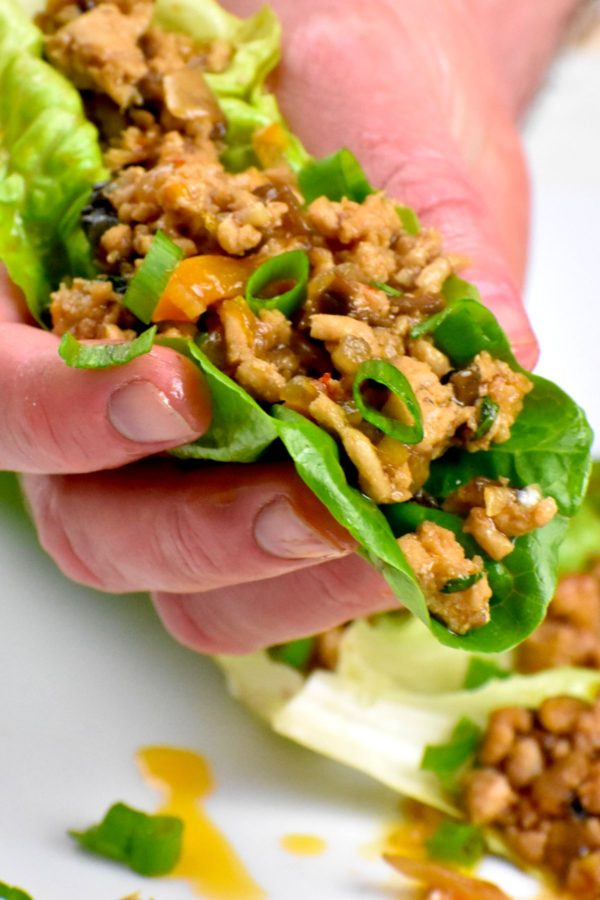 Hand holding a lettuce wraps.