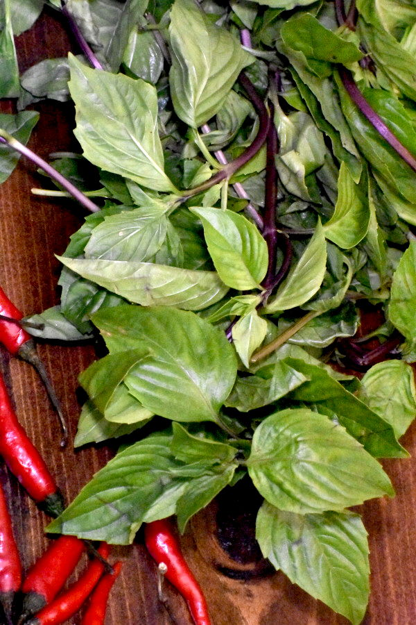A big bundle of Thai basil on a wooden bench.
