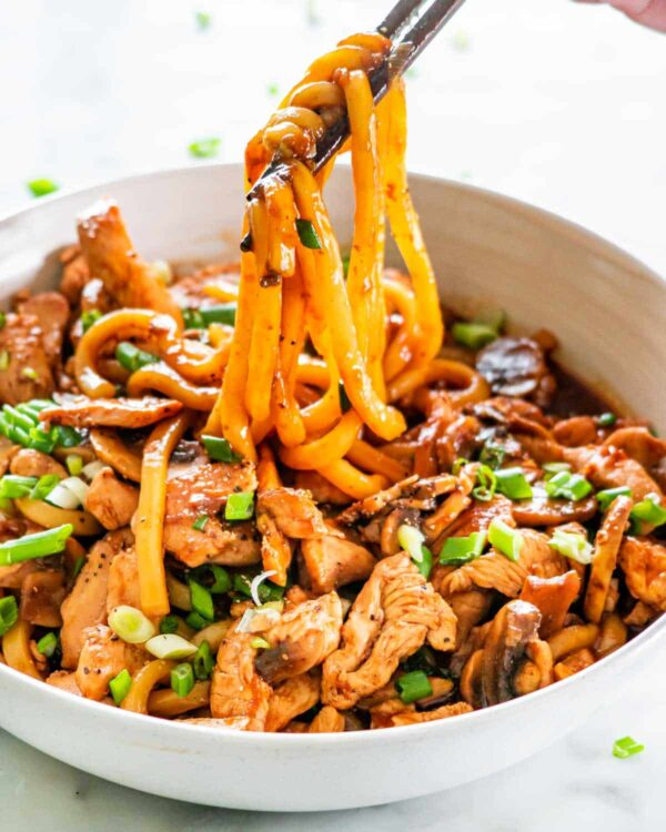 The 5 BEST Asian Recipes - chicken udon noodles.