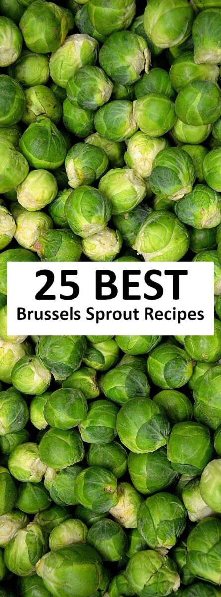 The 25 BEST Brussels Sprout Recipes.