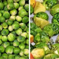 Brussels sprout recipes.