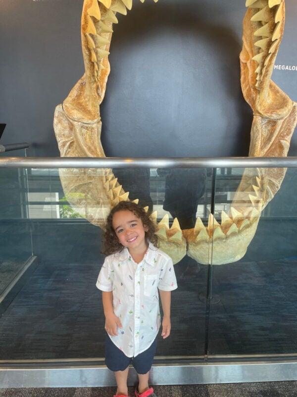 Noah by a big shark jaw.