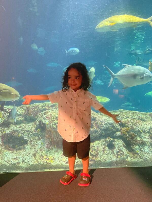 Noah by a tank full of fish at the South Carolina Aquarium.