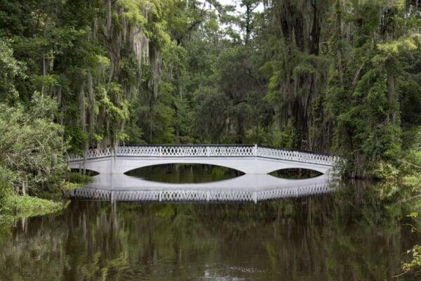 A pretty bridge at Magnolia plantation.